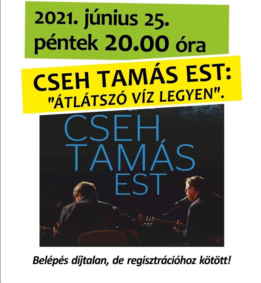 Nyári Művészeti Fesztivál - Cseh Tamás Est